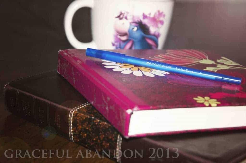 graceful abandon bible devotions journal quiet time